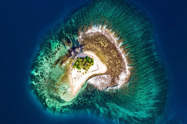 Island: developers can work from almost anywhere